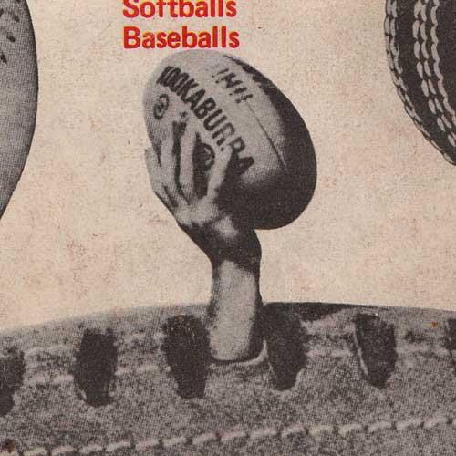 Kookaburra has balls